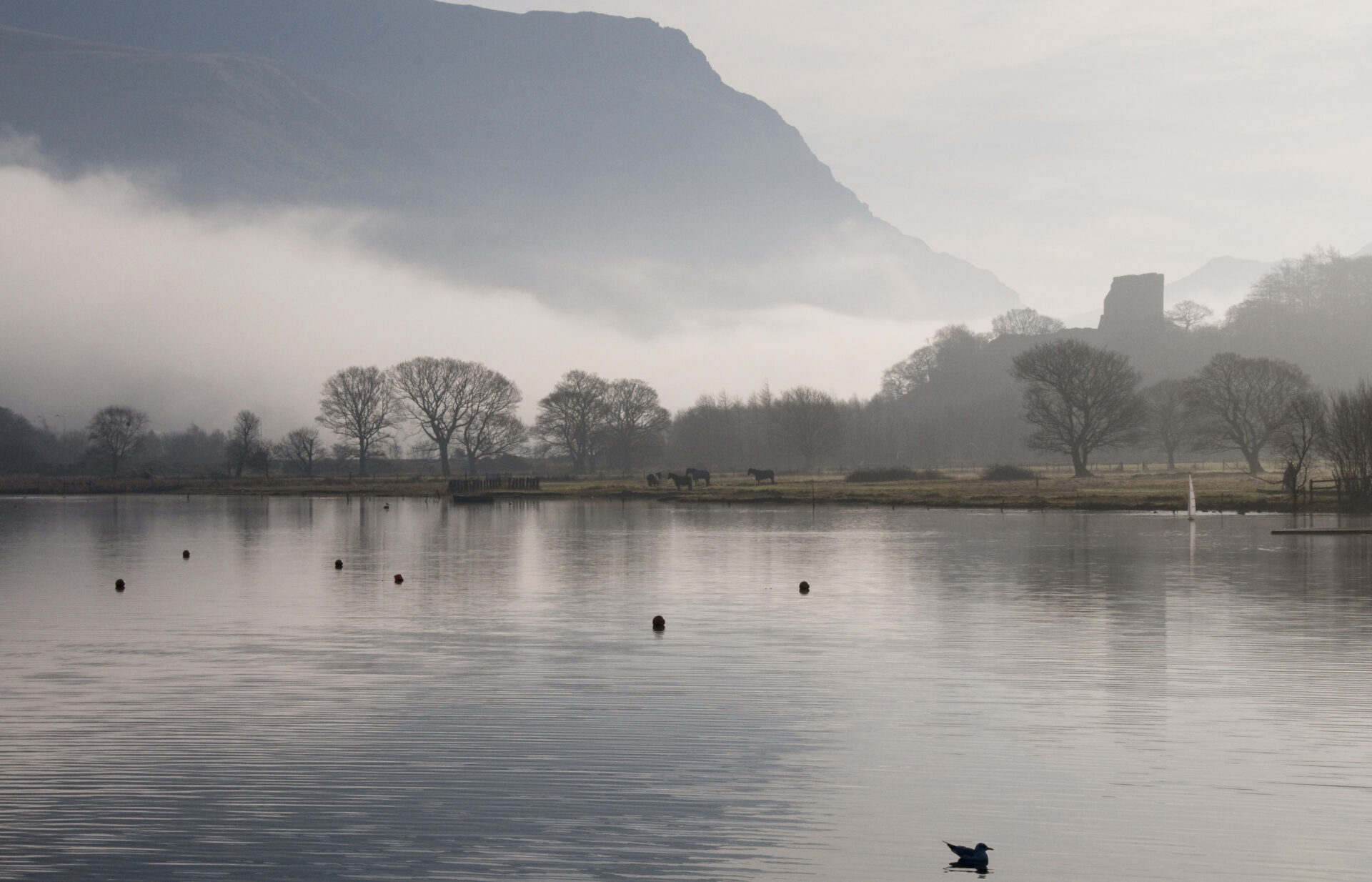 Dolbadarn Castle and Lake Padarn in the mist in Llanberis North Wales