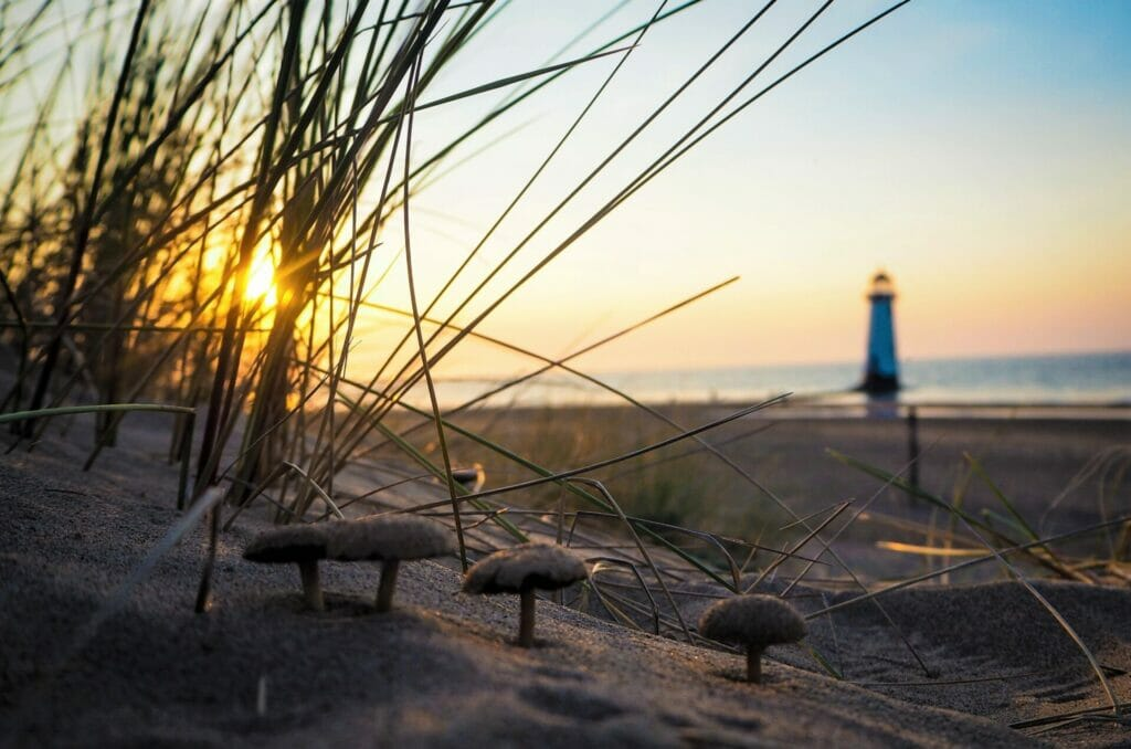 Lighthouse, Seascapes & Sunsets - Talacre Beach - Roving Academy Evening - Photo of the sun going down behind the lighthouse at Talacre Beach North Wales - shot through the sand dunes